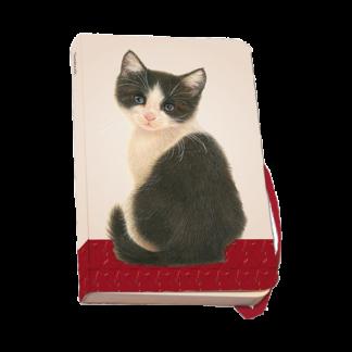 Skrivbok_kattunge